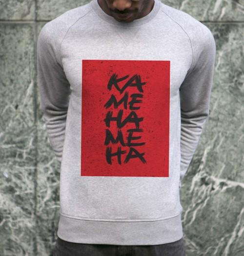 Sweat pour Homme Kamé Hamé Ha de couleur Gris chiné